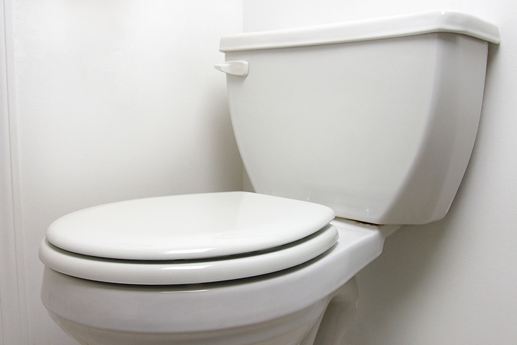 How Do Toilets Work?